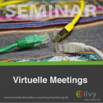ilvy-intercultural-hr-virtuelle-meetings